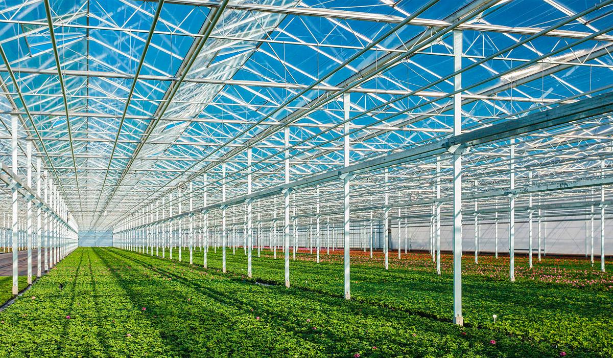 Invernaderos urci especialistas en construcci n de for Construccion de viveros e invernaderos